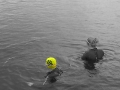 open water swimming with rlss tophat