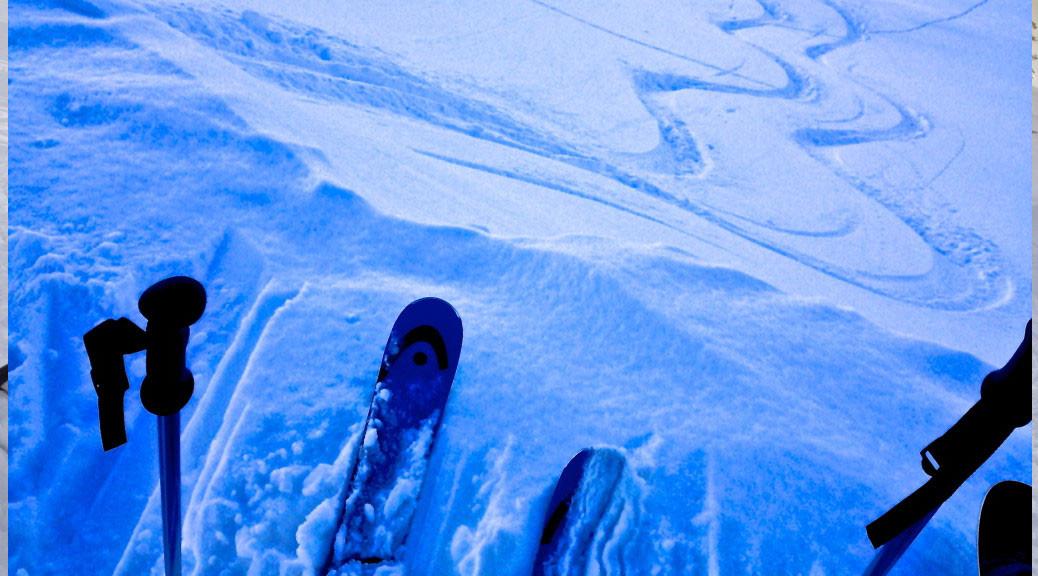 head rev 85 skis