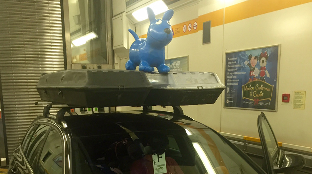 blue dog on roof box