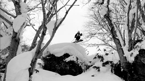 skier backcounrty powder