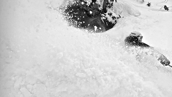 skier powder skiing