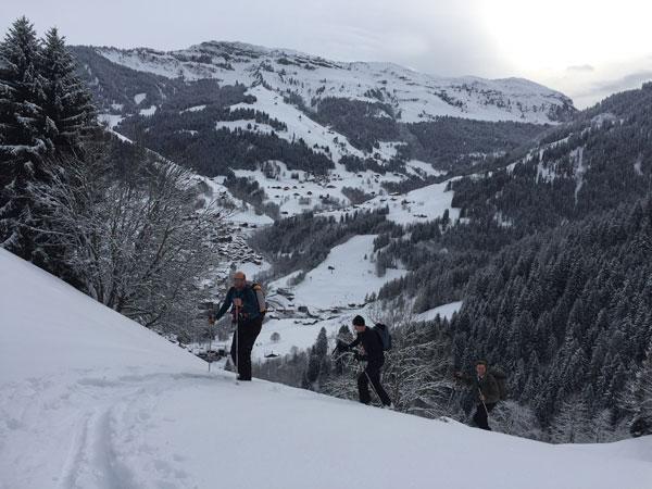 ski touring skinning up