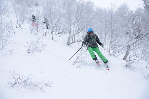 tree line skiing